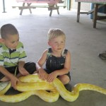 reptile bday party 05292011 036